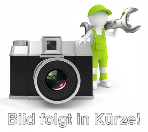 Schlüsselanhänger KFZ-Line: mit Metallöse und Ringen